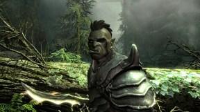 The-Elder-Scrolls-V-Skyrim_2011_04-18-11_002.jpg_600