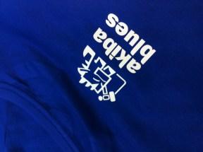 camiseta akb 1