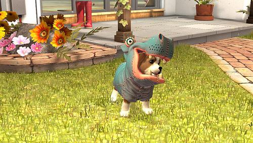 PlayStation Vita Pets Accesorios