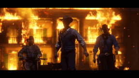 Red Dead Redemption 2 (8)