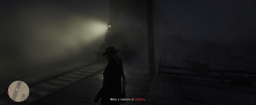 Red dead redemption 2 009