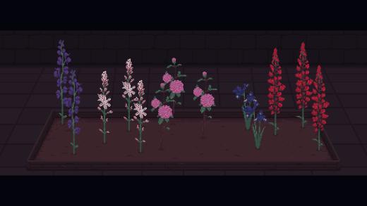 Eternal Home Floristry