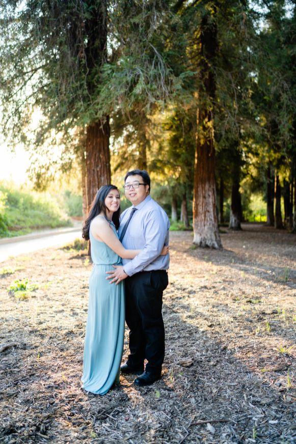 Sequoia Tree Engagement