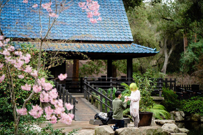 proposal at descanso garden