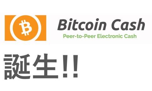 Bitcoin Cash(ビットコインキャッシュ)今後の将来性は?みんなの反応は?