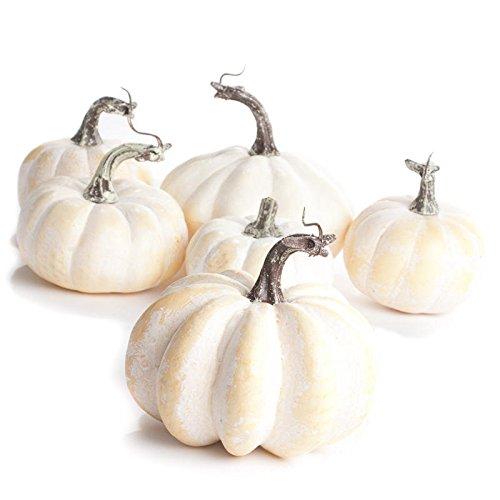 Creamy White Pumpkins