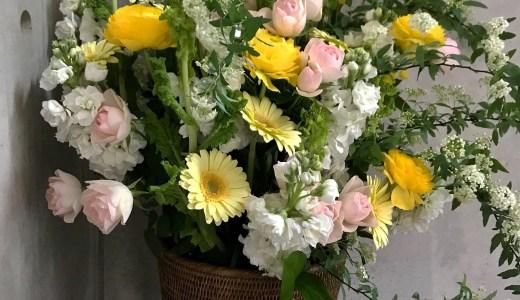 幸福感あふれる黄色の花々のアレンジメント(3/5~)は、もう、好きな要素だけしかない!