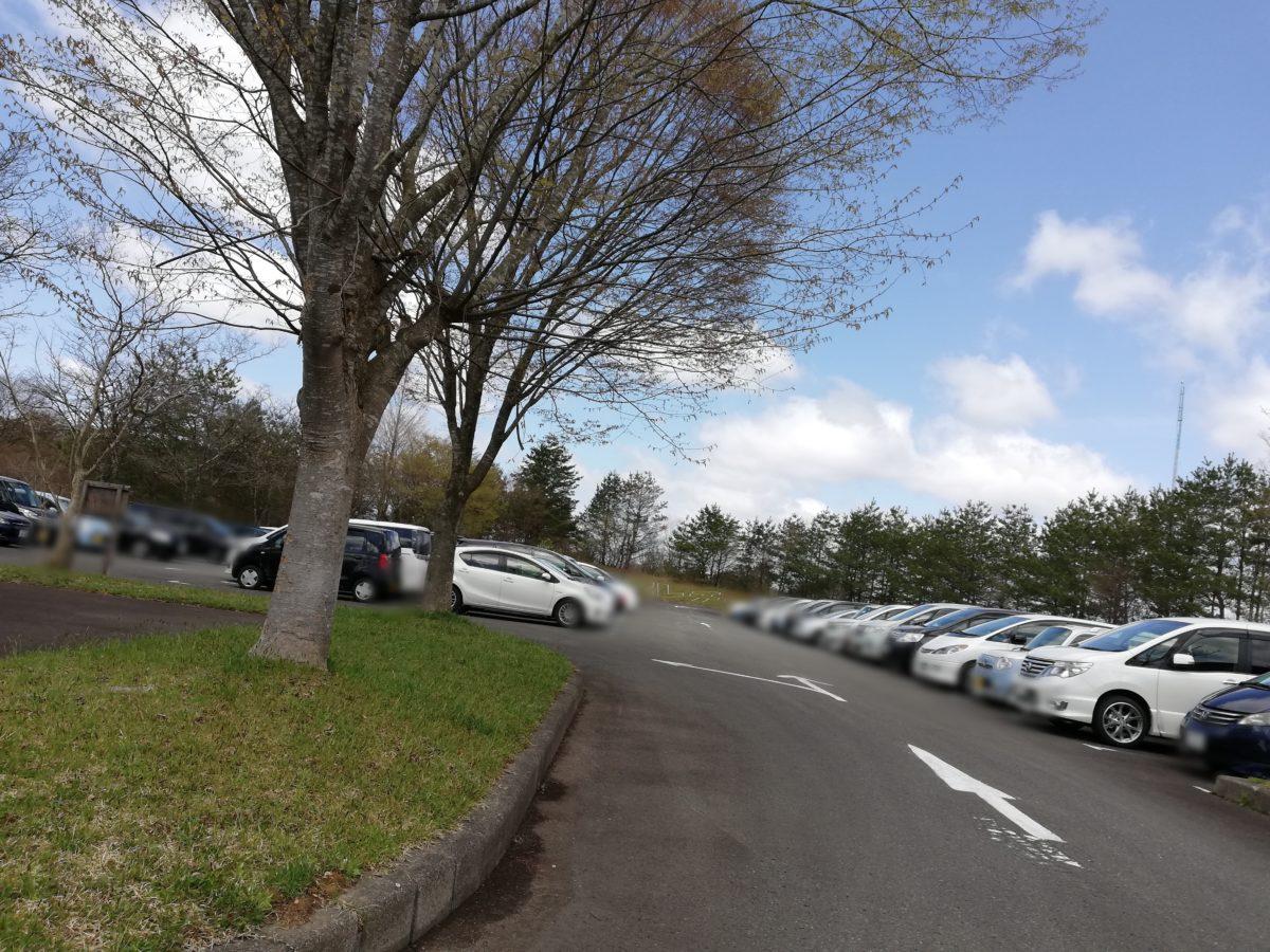 秋田県立中央公園 アスレチック 駐車場