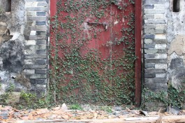 An old door with plants growing over it.