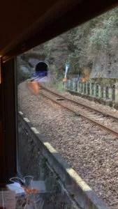 IMG 1163 169x300 - 四国の観光列車①「四国まんなか千年ものがたり」