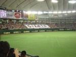 東京ドームで警備員アルバイト求人募集中!野球にイベントに