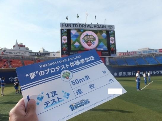 夢のプロテスト:横浜DeNAベイスターズ
