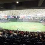 バックネット裏からの景色:東京ドーム