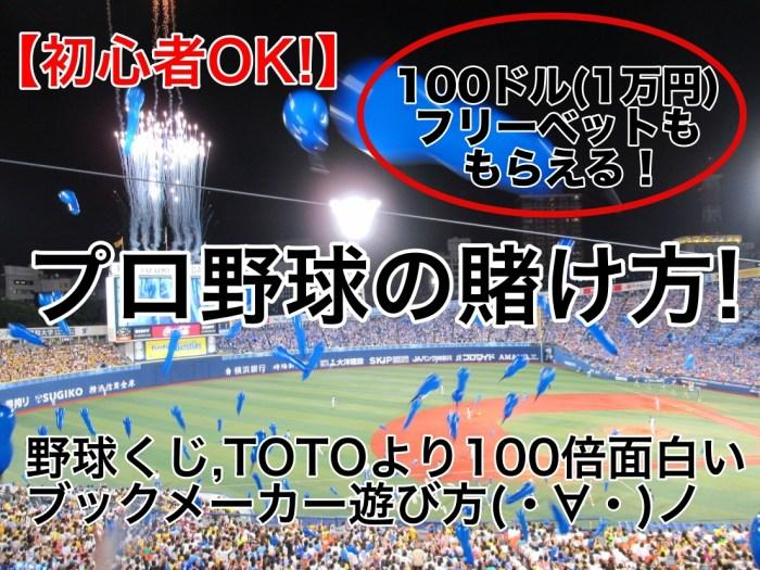 【初心者OK!】プロ野球賭け方!