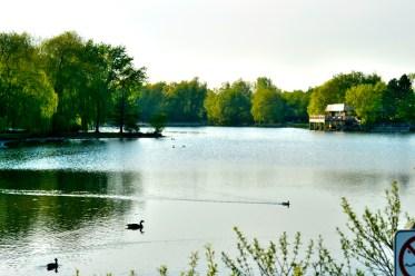 Toogoode Pond