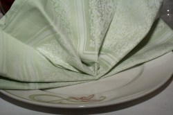 Enchanted Garden napkin
