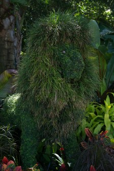 Mustafa topiary