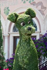 Tramp topiary