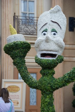 Lumiere topiary
