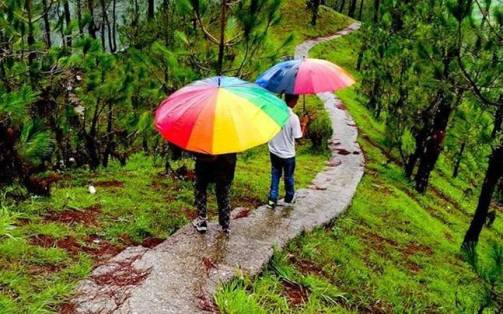 7 tips to help you travel better and safer during monsoons - Travel News