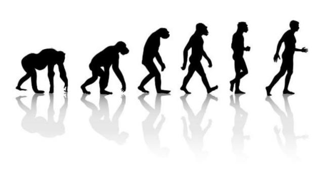darwin, charles, theory of evolution, charles darwin, darwin day, darwin day 2019, on the origin of species, darwin's doubt, darwinian, darwin's theory of evolution, was darwin wrong