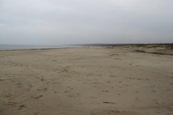 The cold Baltic sea