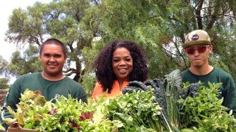 In Honor Of Oprah's Birthday, Here Are Her Most Iconic Harvest Day Photos