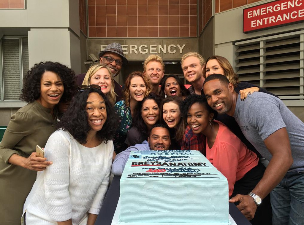 Let's Celebrate Grey's Anatomy Hitting 250 Episodes by ...