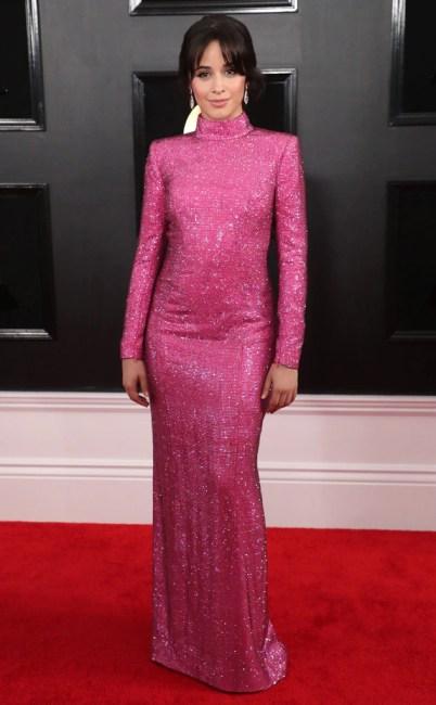 Camila Cabello, 2019 Grammys, 2019 Grammy Awards, Red Carpet Fashions