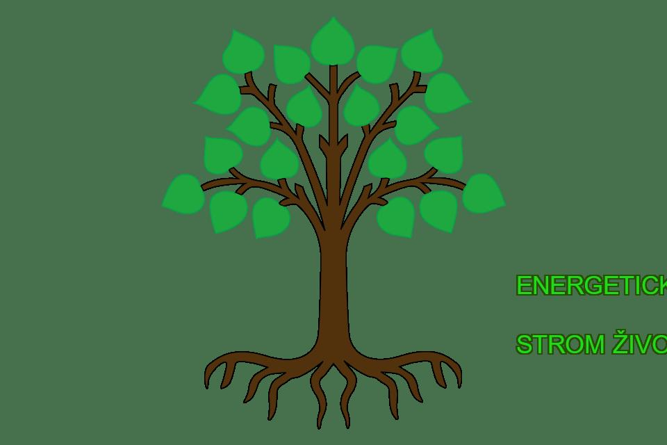 Energetické cvičenia Strom života