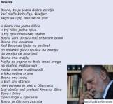 nedzad-ibrisimovic-bosna