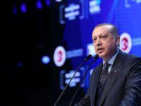 Erdogan: Izrael je okupatorska država