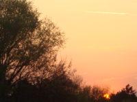 Sa vjerom u novi dan: Život kao slagalica