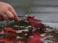 Zaboravi greške koje si u životu napravio, ali zapamti lekcije koje su ti one ostavile!