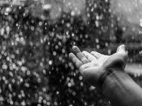 Iskoristite kišu
