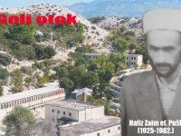 Hodža hafiz na Golom otoku: Bijela ahmedija na Bijelom otoku