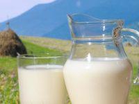Poslanikova medicina: I mlijeko čisto pijte…
