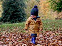 Aktivnosti i igre s djecom u jesen