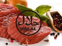 Semić Isaković: Svinja – znanstvene posljedice korištenja svinjskog mesa, potreba za halal mesom