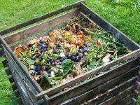 Kako pripremiti kompost?