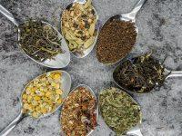 Začinsko i ljekovito bilje