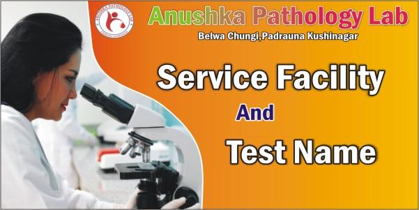 Anushka Pathology Lab Service
