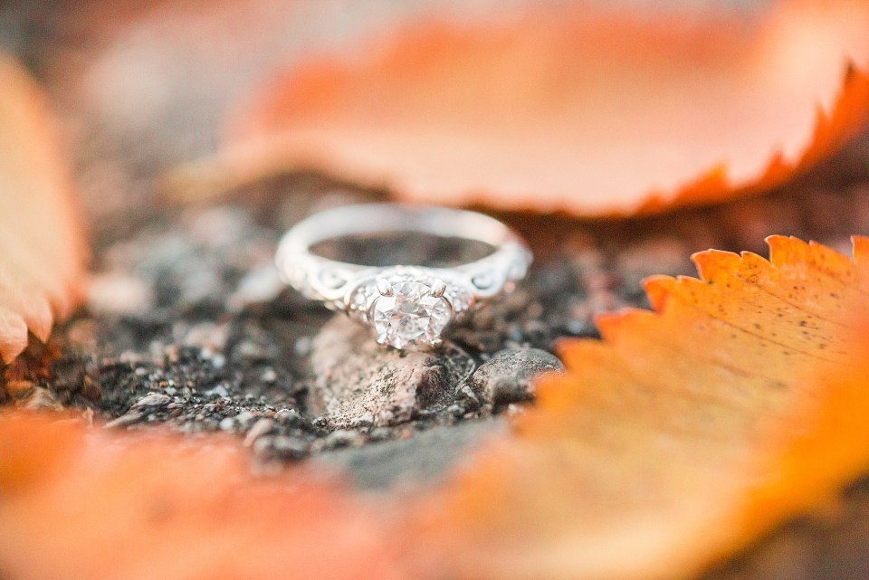White gold engagement ring sits between orange leaves