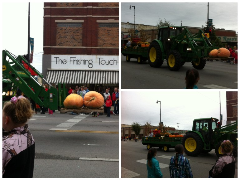 The local pumpkin patch brought their largest pumpkin