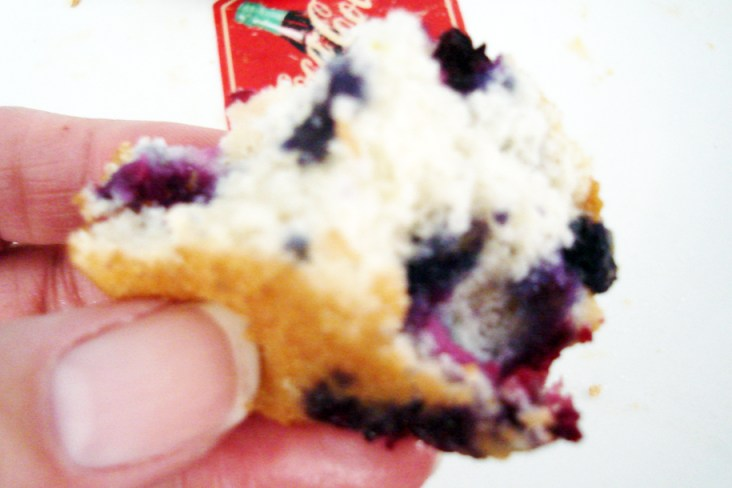 These blueberry muffins are so good they don't last long