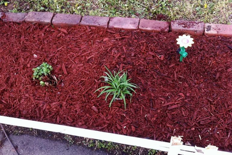 Here's a close up of the flower beds.