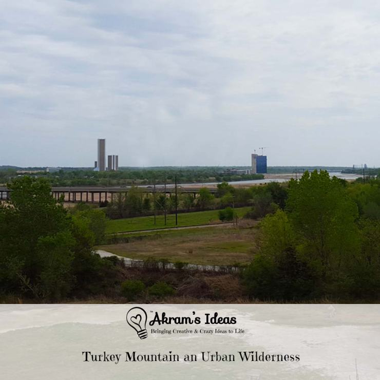 Turkey mountain is a 300-acre Wilderness right in the heart of Tulsa is the perfect place for a fun family outing.
