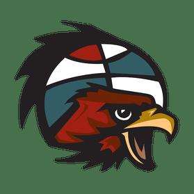 Baltimore Hawks