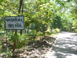 Ratanmahal forest