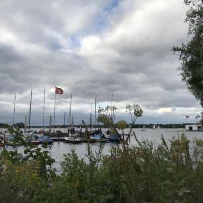 Blick auf die Alster, im Vordergrund Gras und viel Grün, rechts schaut ein großer Baum ins Bild, mittig sieht man einen Steg mit vielen Segelbooten, die Alster ist auch voll mit Booten, es ist bewölkt mit kleinen Blicken auf einen blauen Himmel